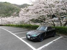 2020 桜・カプチーノ&ワゴンR