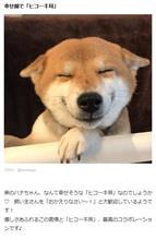 ヒコーキ v.s. イカ!