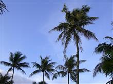 いま~南の島では~~♪