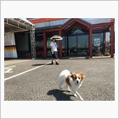 SUMMER【トライアル発】