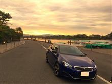 早朝 盛夏 嵐山