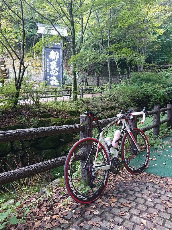 マウンテン あつ 乗れる 森 バイク