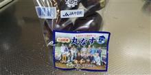 新潟県十日町 丸茄子