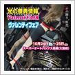 今週末は大阪府スーパーオートバックス高槻にてヴァレフェス開催!