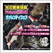 明日より開催!兵庫県、神奈川県にてヴァレフェス開催!