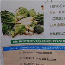 フォルクスワーゲンのフェアで野菜を貰う