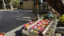 斎王ゆかりの宮 竹神社