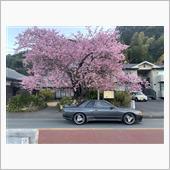 桜とGT-R