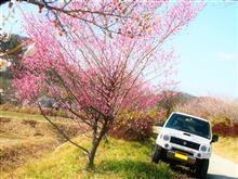 梅 は 百 花 の 魁