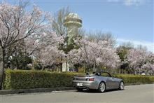 2021春、桜をバックに愛機S!
