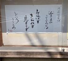 桜の頃の烏山寺町さんぽ