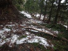山の残雪・・・・道路が木で・・・