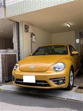 洗車と小ネタ