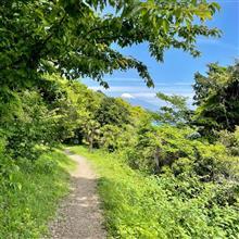 ちょっとだけお出かけお散歩🚶♂️ [中編] 〜 薩埵峠から富士山を望む🗻