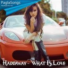 今週のいい曲 Haddaway - What Is Love (Tommer Mizrahi Remix)