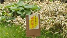 「煩悩林道2021」vol.34「楽古岳線」