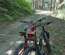 日曜日は自転車屋さん:やっぱ山でしょ マウンテンバイク