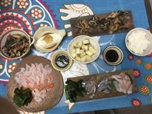 旬な鰯とオコゼに熟成石鯛の刺身