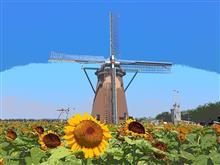 🌻夏の風物詩巡り 2021 No.4『風車とひまわり編』🌻