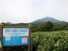北海道銘菓ゆかりの場所にて半額のどら焼きを食する。