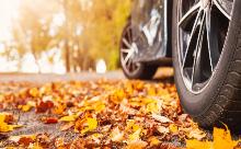 落ち葉がもたらす車への影響とは?