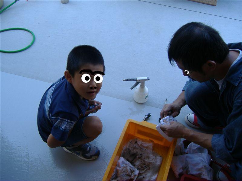 インジェクター洗浄