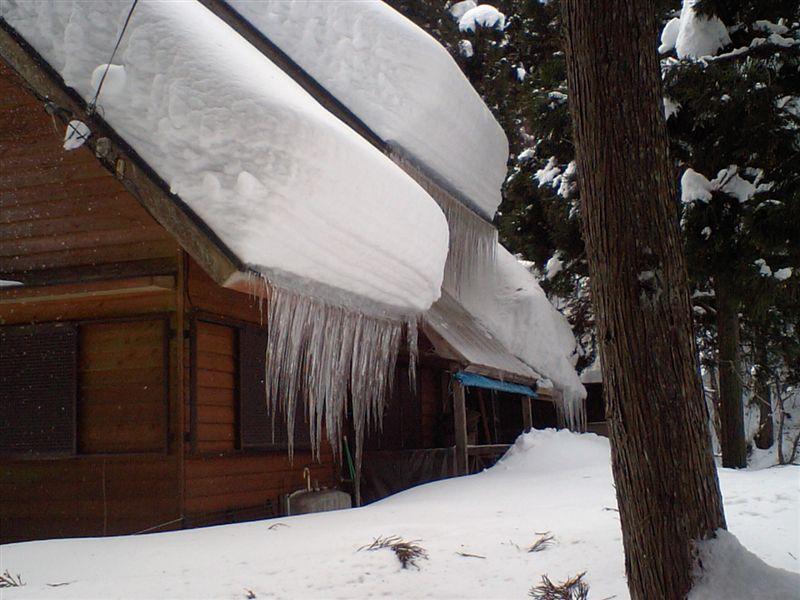 冬季のAT発進不良を検証&修理の巻