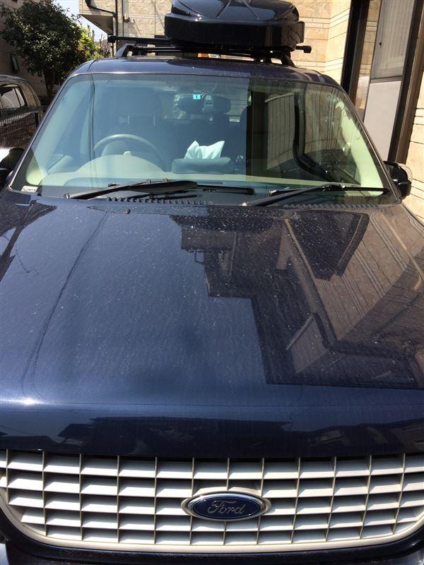 フォードディーラーで洗車