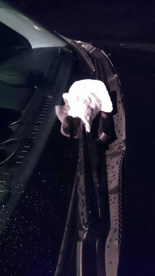 交換中はアームをあげとくと、万が一ブレードをつける前にアームが倒れた(戻った)場合、フロントガラスにヒビ入りかねない(現に昔SG5乗りの奴がやからした→フロントガラス交換コース)ので、ウチはタオルとかでくるんだ状態でアームは倒しておきます。<br /> これ以上は倒れないからね。