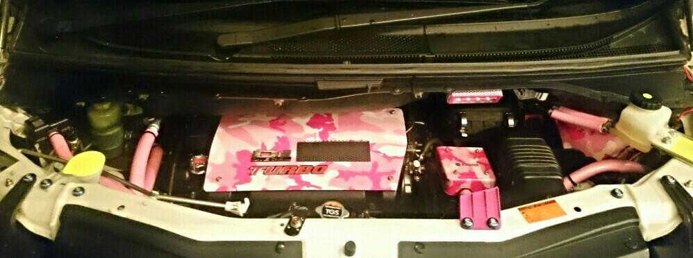 ダミーホース 、ピンク