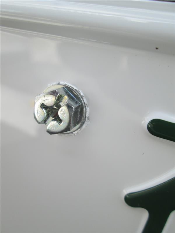 美白化☆ラグビーワールドカップ特別仕様ナンバープレート