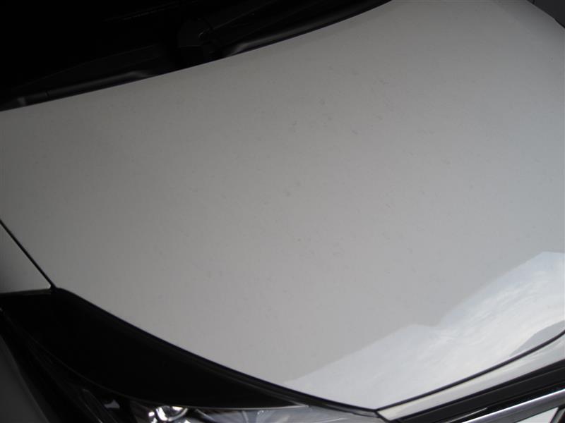 Vitz RS 洗車