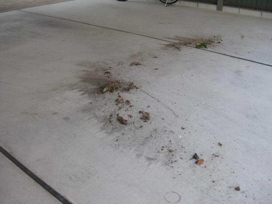 ガレージ清掃