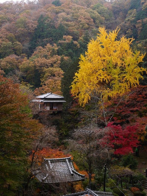 『関東の高野山』とも評される浄因寺は岩山の上に建てられている【清心亭】がなんと言っても見どころなのです。<br /> <br /> あの葛飾北斎が「足利行道山くものかけはし」として描かれていることでも知られております。<br /> <br /> 本題とは少々話しがずれてしまいましたが、スタッドレスタイヤのインプレッションについては、また後ほどパーツレビューにでもレポできればと思っております。m(_ _)m<br />
