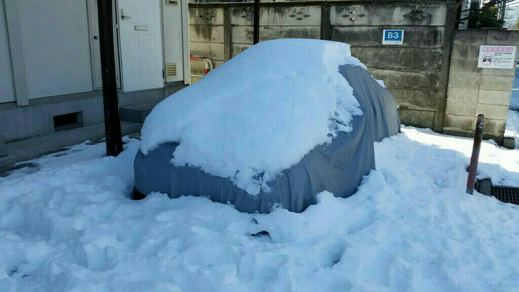 雪かきました❗