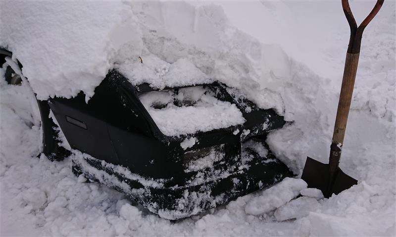 除雪、始動確認等