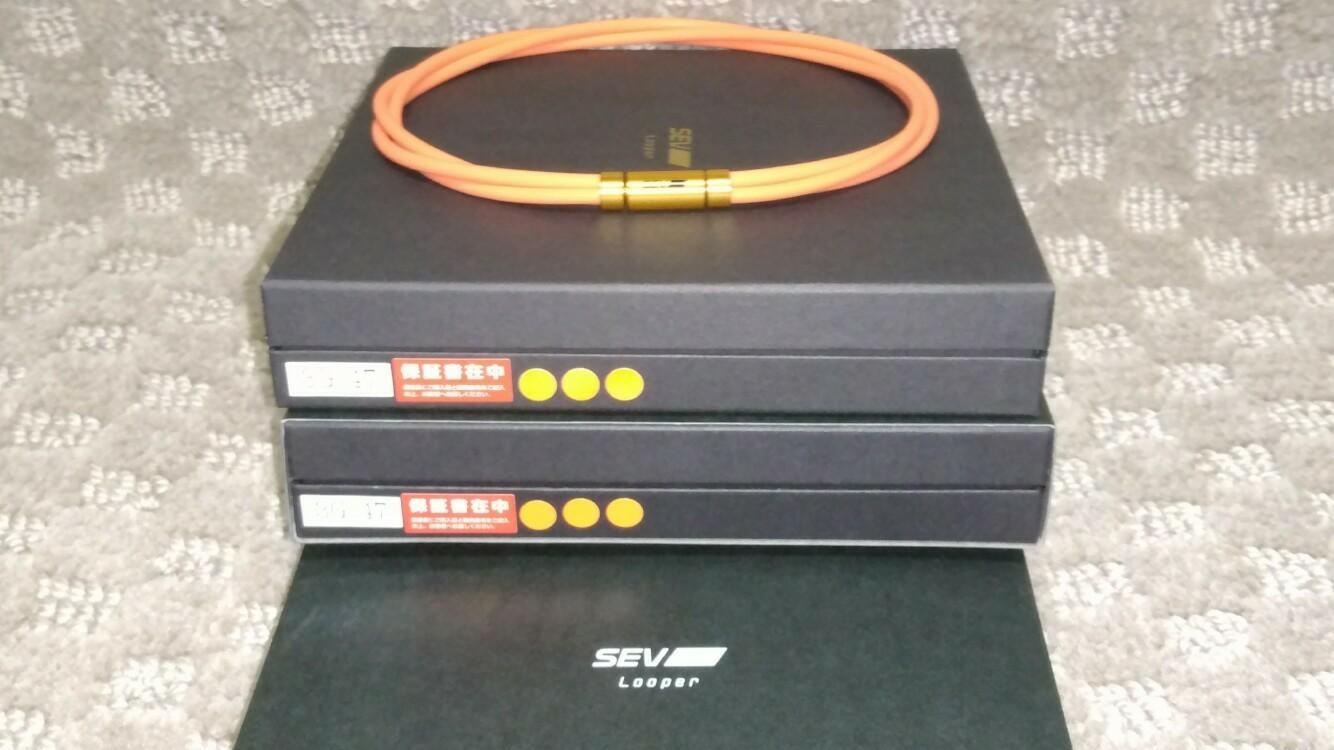 SEVルーパーtype3M&3G