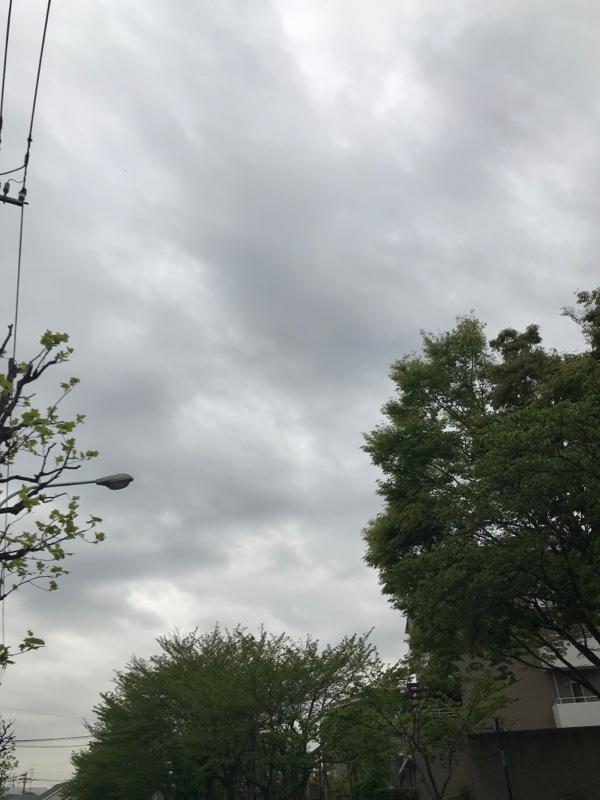 気温17℃ 曇りのち雨…無風( ´Д`)y━・~~