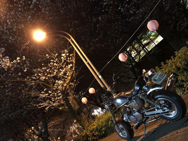 モンキー(ゴリラ) Z50J 6V→12V エンジン載せ替え