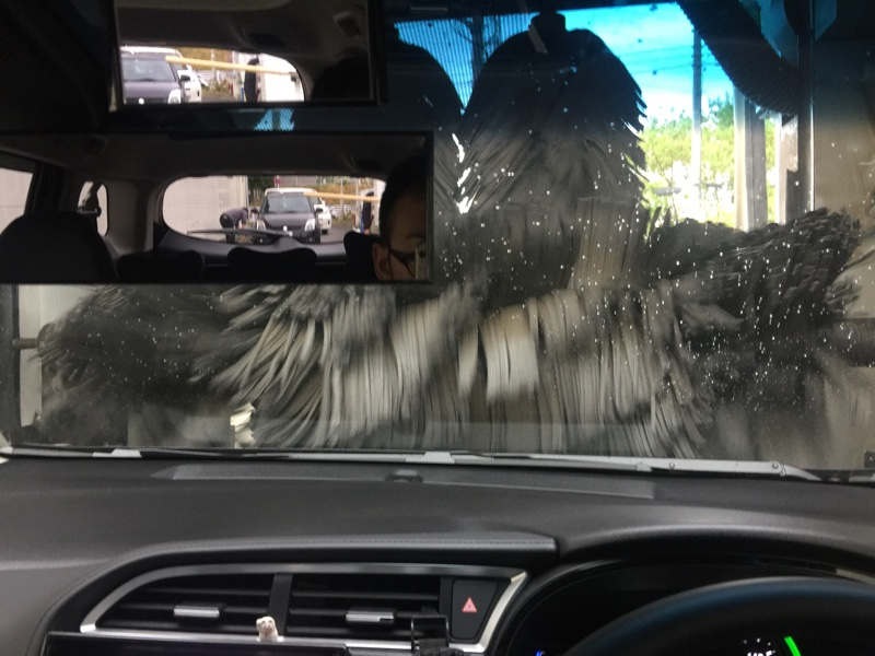 洗車(15回目)