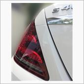 GANBASSさんの製品での洗車/15回目の画像
