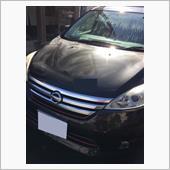 洗車後メンテナンスクリーナーの画像