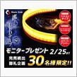 シェアスタイル シーケンシャルLEDテープ ホワイト/アンバー モニターレポート1