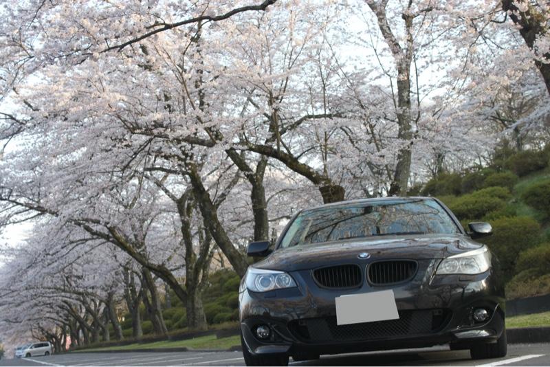 Mスポバンパー、車高調、LED、スムージング、アライメント