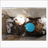 オイル交換 タービン清掃の画像