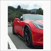 GM Front Wheel Trim Moldingsの画像