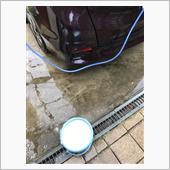 洗車をしました(おまけ付き)の画像