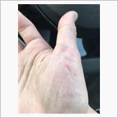 手袋をすると作業しにくいし素手ですると手が傷だらけになる可能性が高いので覚悟して作業しましょう笑