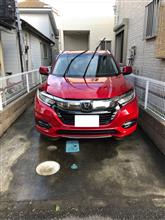 11回目の洗車!