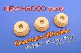 HADOO クワンタㇺ ディフュージョン後側の装着